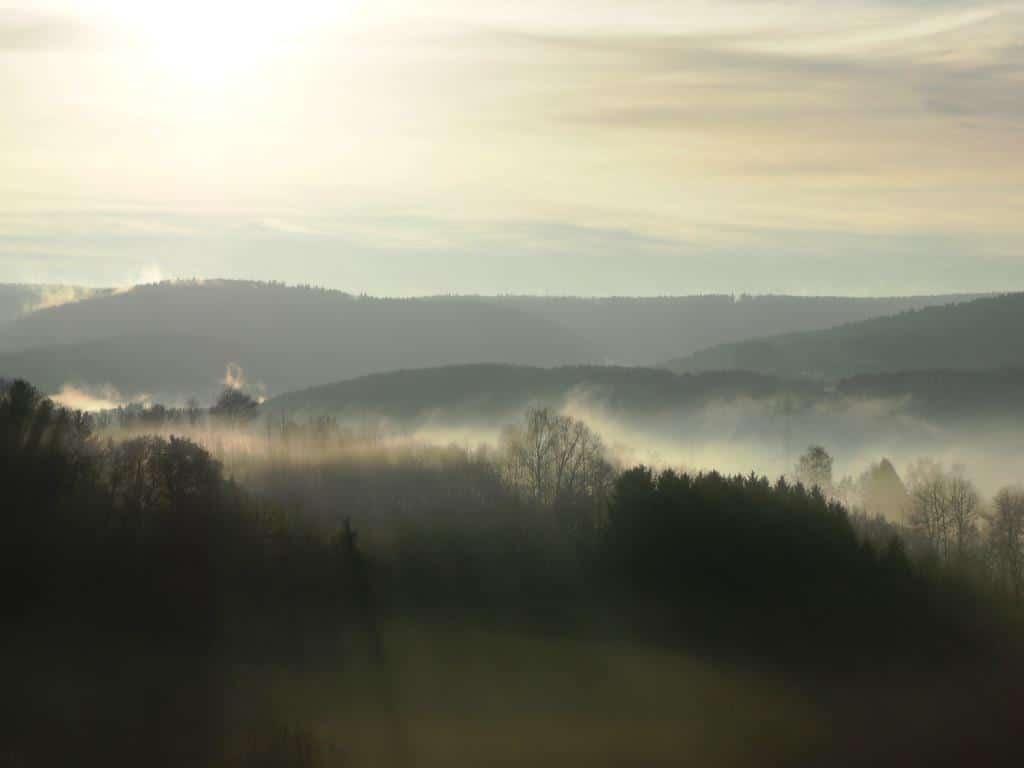 Die Wanderwege im Bergischen Land führen an der heimischen Flora und Fauna sowie an historischen Highlights vorbei. copyright: pixabay.com
