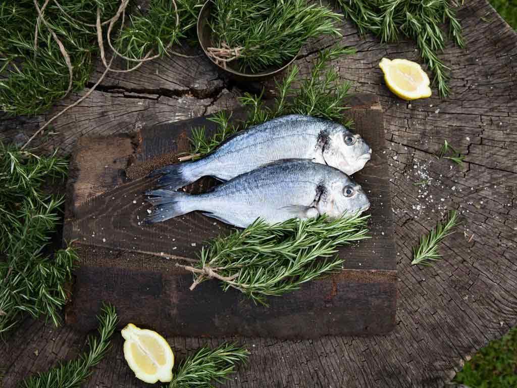 Kölner Fischmarkt 2019 im Tanzbrunnen: Hier alle Termine und Infos! copyright: Envato / Mythja