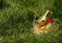 Auf Schoko-Fans wartet zu Ostern im Schokoladenmuseum Köln ein umfangreiches Programm mit Kursen, Verkostungen, Führungen und großem Ferienspaß für Kinder! copyright: pixabay.com