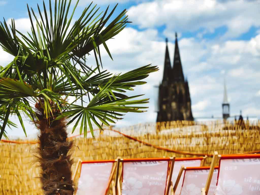 Sommer in Köln und der Region: Die besten Ausflugs- und Freizeit-Tipps!<br /> copyright: CityNEWS