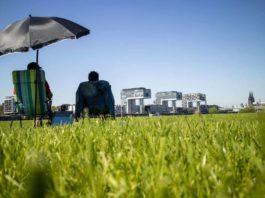 """Das Projekt """"Urlaub in Köln 2019"""" bietet Daheimgebliebenen ein buntes Programm. copyright: Ulrike Hauswirth"""