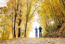 Fit für den Herbst: Jetzt die Abwehrkräfte stärken! copyright: Envato / halfpoint