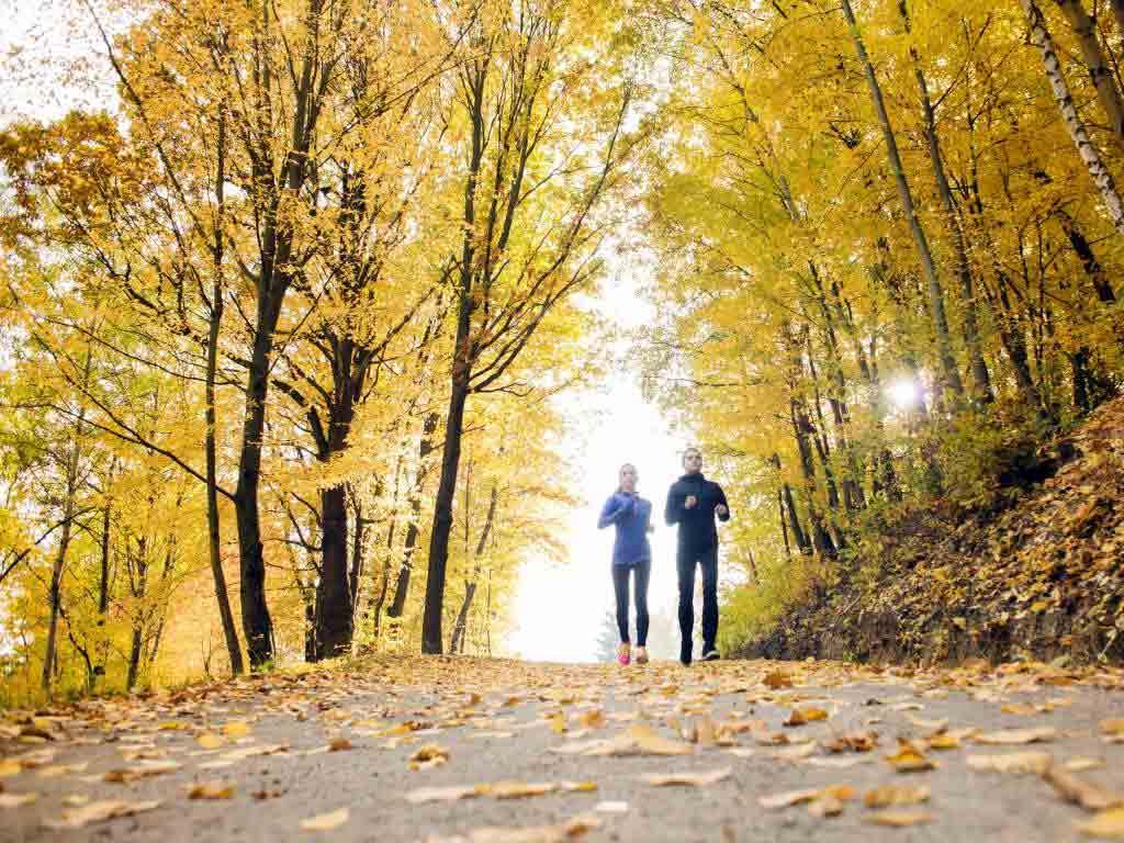 Fit für den Herbst: Jetzt die Abwehrkräfte stärken!