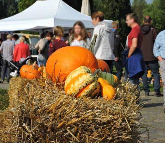 Es wird Herbst im Brückenkopf-Park Jülich: Das Parkfest mit Herbstmarkt copyright: Horrig