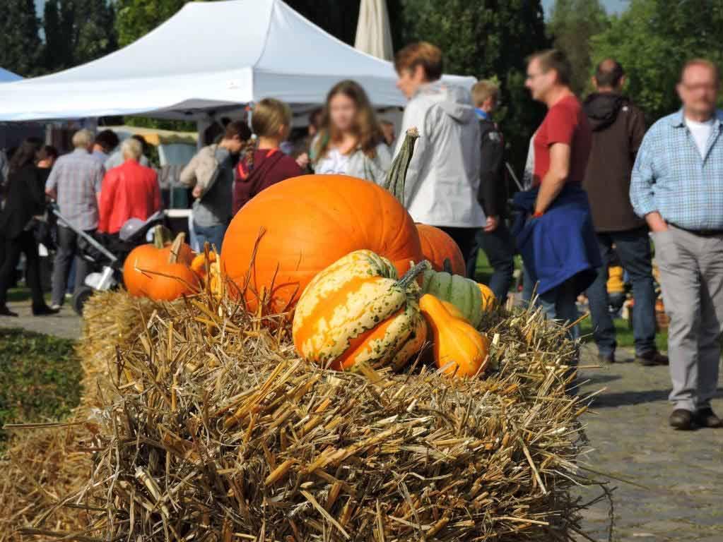 Es wird Herbst im Brückenkopf-Park Jülich: Das Parkfest mit Herbstmarkt
