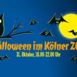 Tierischer Gruselspaß zu Halloween im Kölner Zoo