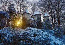 Teilnahme Gewinnspiel Winter-Efteling CityNEWS