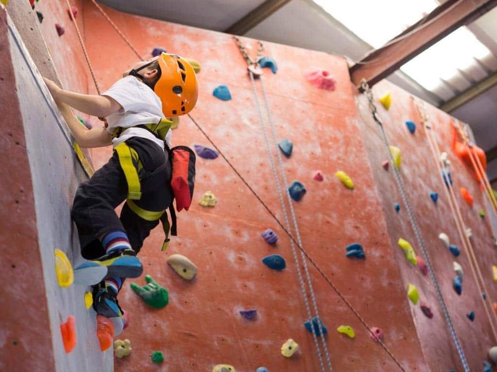 Ein Traum für alle kleinen (und großen) Gipfelstürmer: Ein Besuch in der Kletterhalle. copyright: Envato / Wavebreakmedia