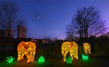 Mit CityNEWS zum China Light Festival in den Kölner Zoo copyright: CityNEWS