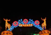 CityNEWS verlost 5 x 2 Tickets zum China Light Festival im Kölner Zoo copyright: CityNEWS