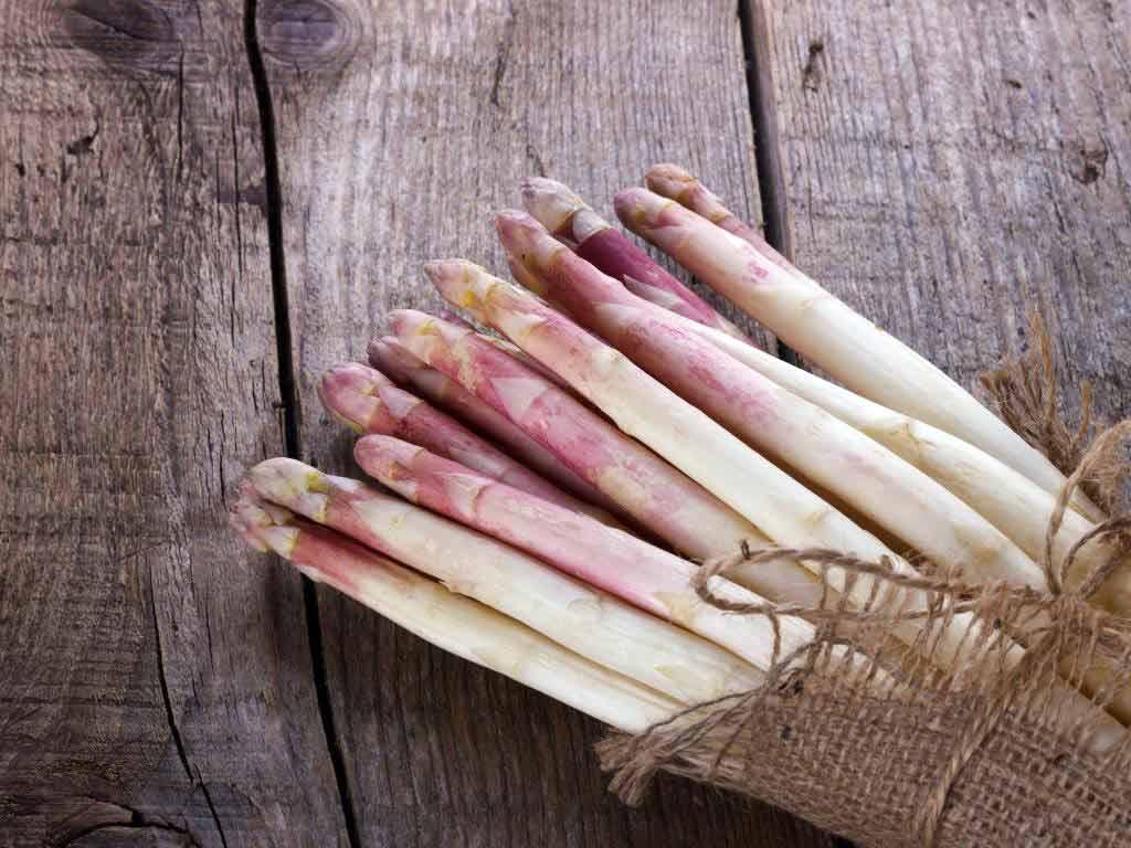 Besonders der nachhaltig angebaute Spargel vom Beller Hof ist äußerst beliebt. copyright: Envato / Lana_M