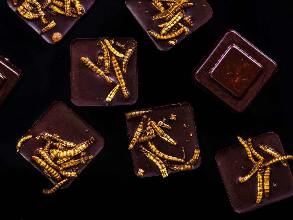 Dschungelcamp-Feeling kommt bei der Schokolade mit Insekten auf. copyright: Envato / merc67