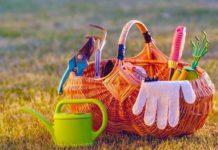 Ratgeber: So wird der Garten wieder fit für den Frühling! copyright: Envato / haveseen