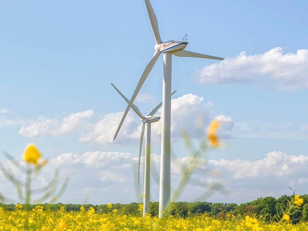 Aktuell betreibt die RheinEnergie mehr als 100 Windkraftanlagen. In den kommenden Jahren investiert das Unternehmen weitere 100 Millionen Euro in Erneuerbare Energien.