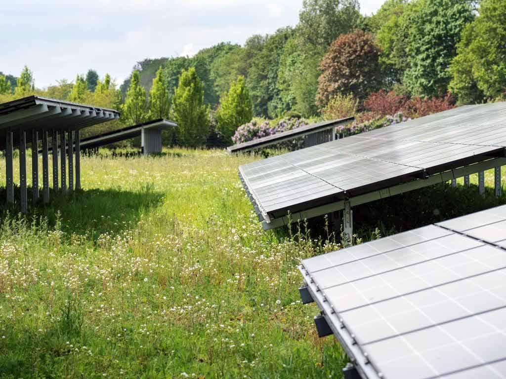 Der Kölner Dienstleister betreibt mehr als 25 Photovoltaik-Anlagen.