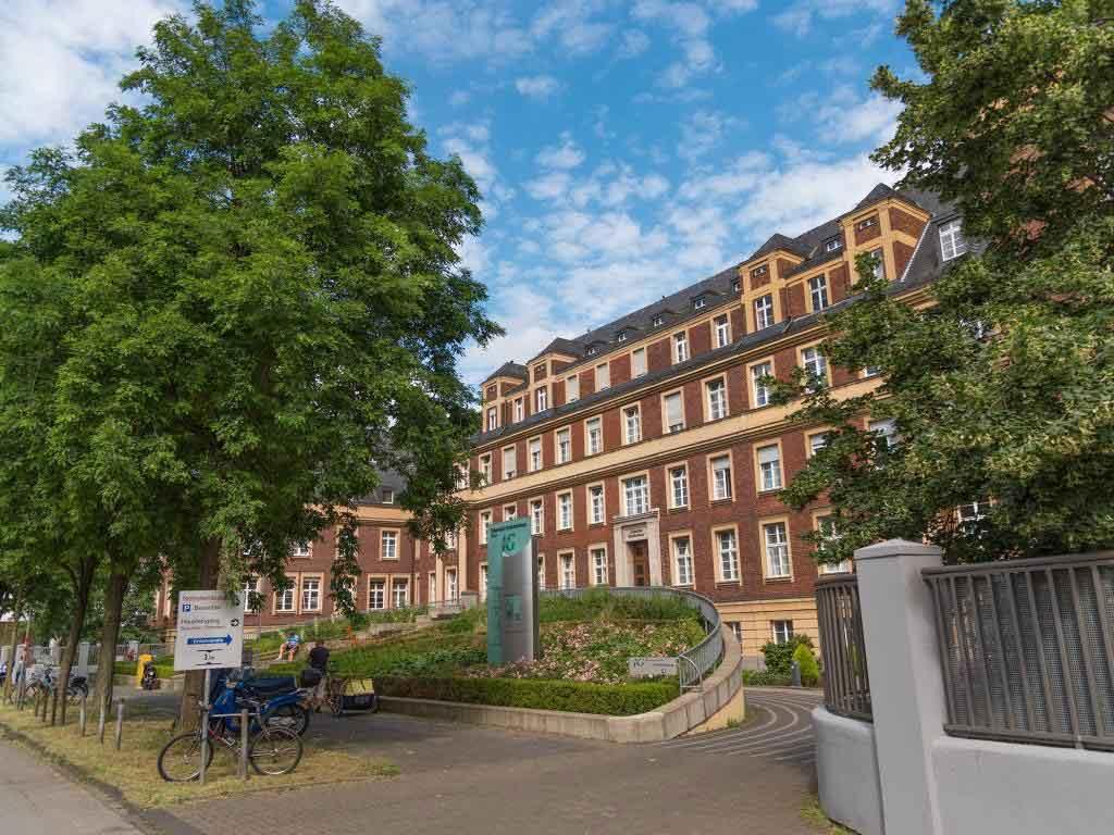 ErgoCum Laude: Die neue Schule für Ergotherapie in Köln