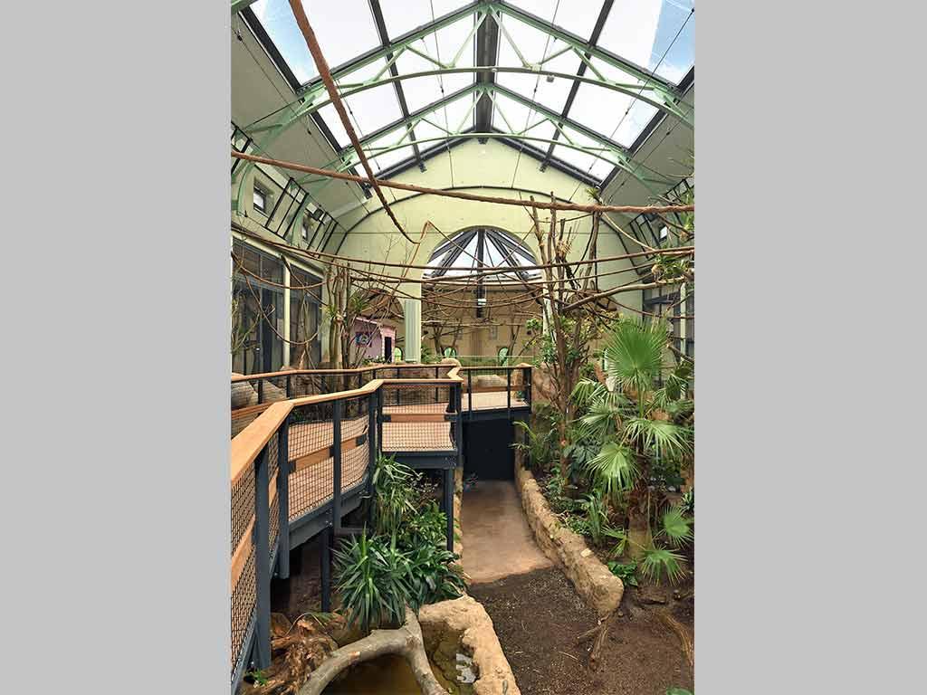 Im Kölner Zoo wurde nach Sanierung des historischen Arnulf-und-Elizabeth-Reichert-Haus eine neue Dschungel-Erlebniswelt eröffnet,